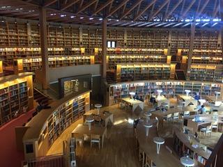 図書館3.jpg